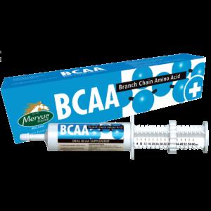 BCAA Paste