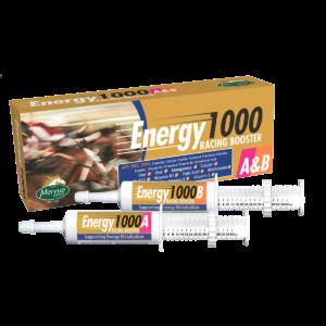Energy1000A&B