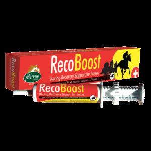 RecoBoost